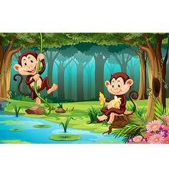 Monkeys living in the jungle vector