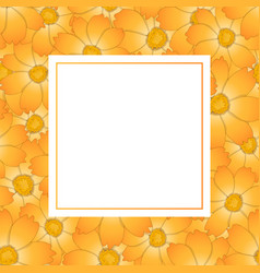 Orange yellow cosmos flower banner card vector