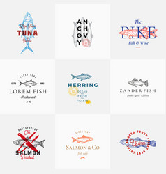 premium quality retro fish signs or logo vector image