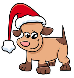 puppy on christmas cartoon vector image