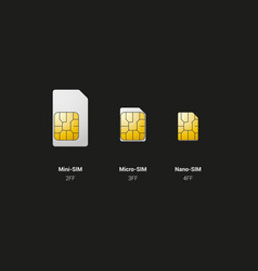 sim card overview vector image