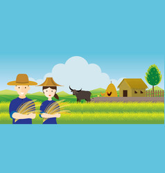 Thai farmer with rice and paddy field background vector