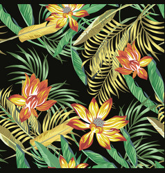 tropical foliage flowers seamless black background vector image