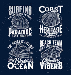 tshirt print with ocean shells emblems vector image