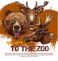 zoo animal banner with sketched bear dear and elk vector image