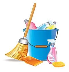 Bucket With Detergents vector image vector image