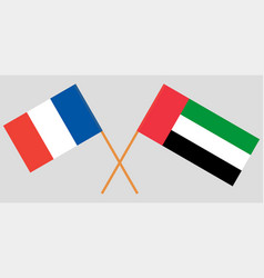 France and united arab emirates flags vector
