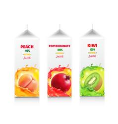 Juice package set carton box vector