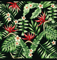 Tropical plants and flowers seamless black vector