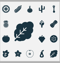vegetable icons set with mandarin peanut cactus vector image