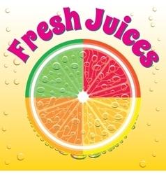 Banner for juice grapefruit orange lime lemon vector