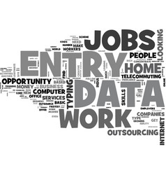 why data entry work from home text word cloud vector image