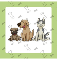 3dogs sitting vector image