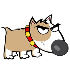 Angry Brown Dog Bull Terrier vector image vector image