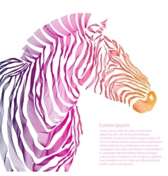 Animal of zebra silhouette vector image