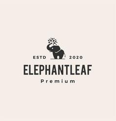 elephant leaf leaves tree hipster vintage logo vector image