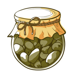 green olives jar hand drawn vector image