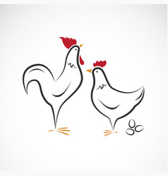 male and female chickens design chickens vector image