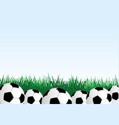 soccer balls and green grass vector image
