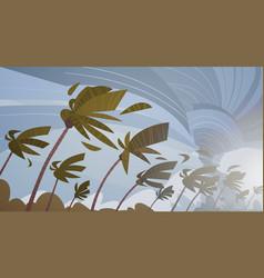 Swirling tornado in sky over palm trees hurricane vector