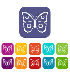 butterfly peacock eye icons set vector image