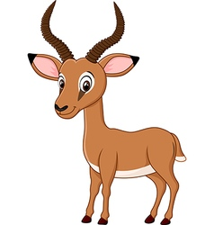Cartoon funny impala isolated on white background vector image