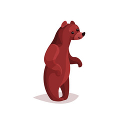cute brown grizzly bear cartoon vector image