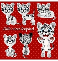 Emotions a little leopard on a red background vector