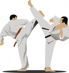 Karate sportsmen vector