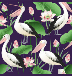 tropical exotic print with pelicans image vector image