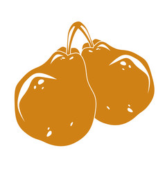 Two yellow simple pears ripe sweet fruits vector