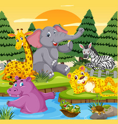 wild animals in the river vector image