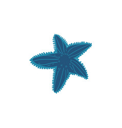 beautiful blue starfish with decorations isolated vector image