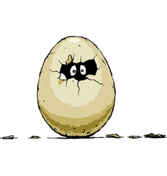 egg hatch vector image vector image