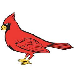 Cardinal logo mascot vector