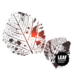 design leaf stamp vector image