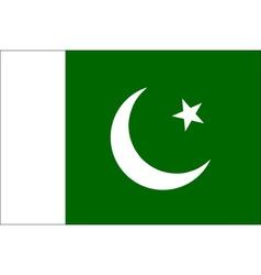 Pakistani flag vector