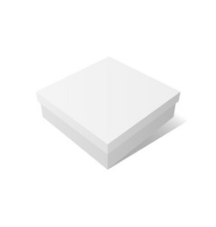 white empty container mockup vector image