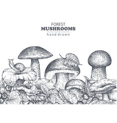 Background with hand drawn forest mushrooms vector