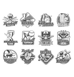 baseball player with sport ball bat glove icons vector image