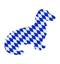 Bavarian longhaired badger vector image