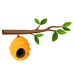 Beehive hanging from a tree branch with leaves vector