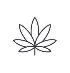 cannabis line icon concept cannabis flat vector image