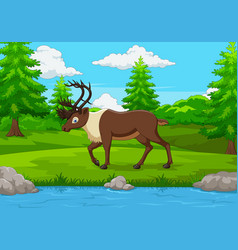 Cartoon elk in the forest vector
