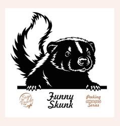 Peeking skunk - funny skunk peeking out - face vector