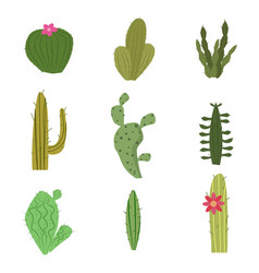set of cactus funny cute plant isolated vector image