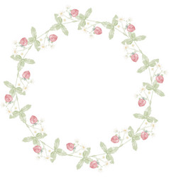 Watercolor hand drawn wild strawberry wreath frame vector