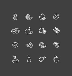 White fruits thin line icons set vector