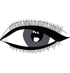 Beautiful woman eye vector image vector image