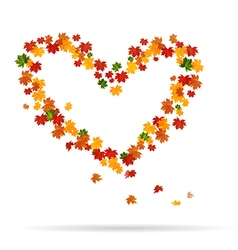 The heart of the autumn leaves vector